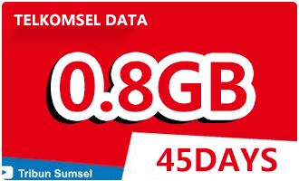 telkomsel data 45days0.8G